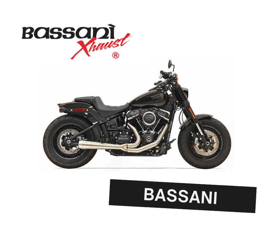 bassani road rage 2-1 custom exhaust